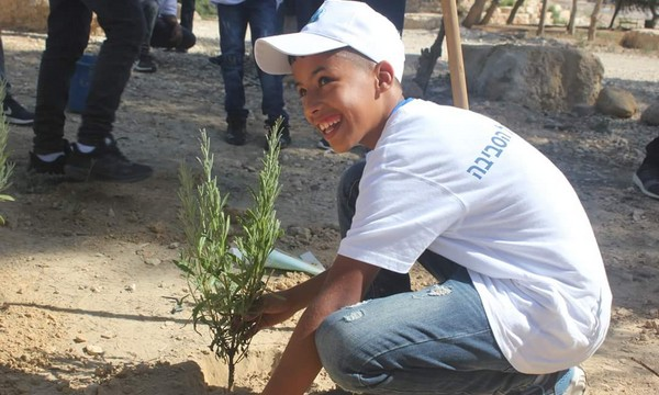Zusammen pflanzen Beduinen und Juden