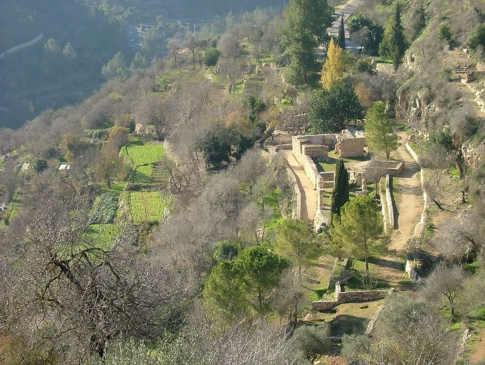 Terrassenanlagen in den Bergen von Jerusalem