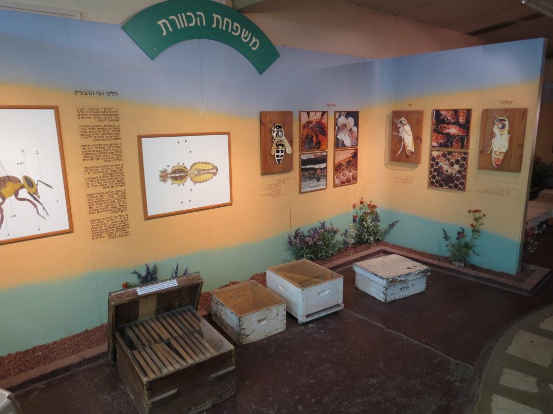 Besucherzentrum zur Imkerei im Kibbutz Yad Mordechai