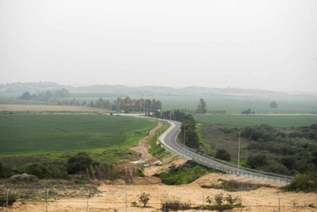 Zufahrtsstraße zum Moschaw mit Schutzbäumen