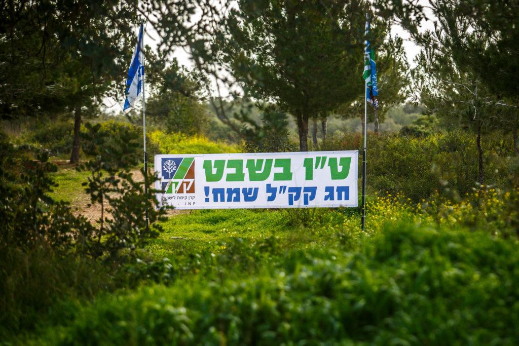 Chag Tu Bischwat Sameach - Tu Bischwat, das jüdische Neujahrsfest der Bäume ist der wichtigstes Feiertag für den Jüdischen Nationalfonds