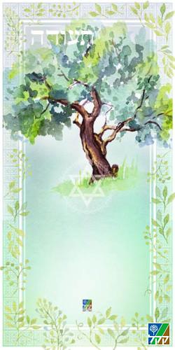 Urkunde Olivenbaum Aquarell