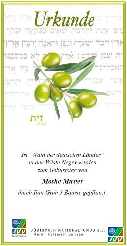 Urkunde Sieben Arten - Olive